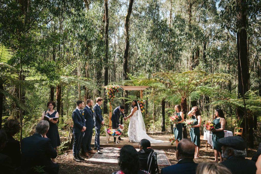 kinglake forest adventures weddings