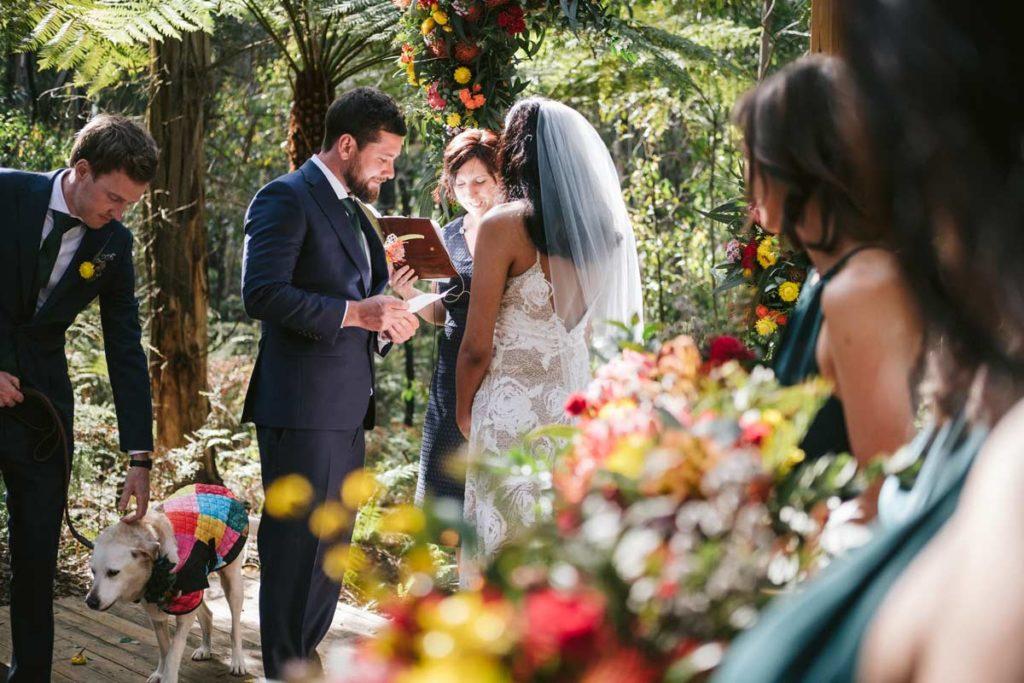 kinglake wedding ceremony