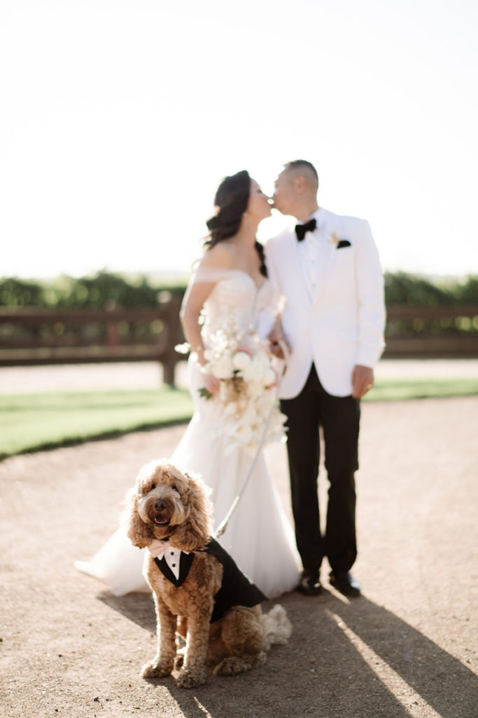Couple kissing with their dog in wedding day photo