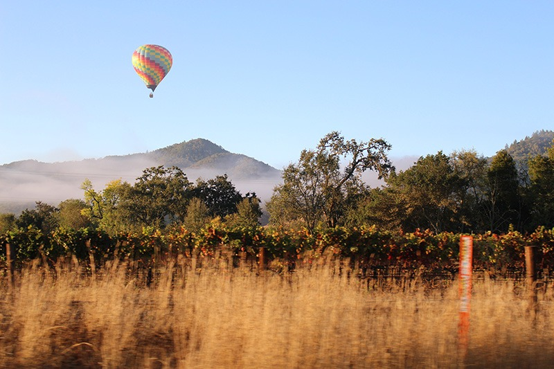 Air balloon yarra valley